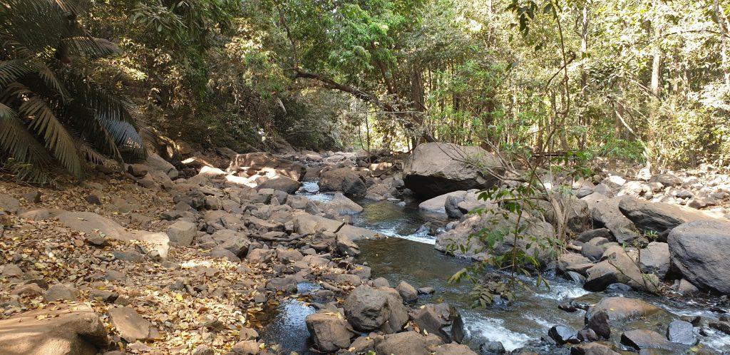 The Dudhsagar Waterfall