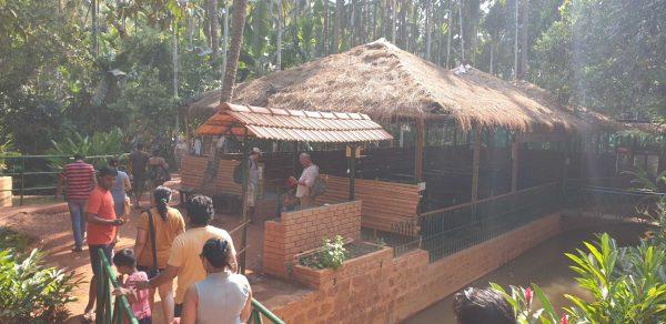 spice plantation huts
