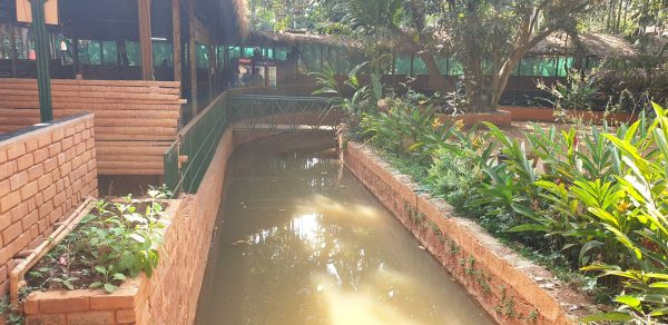 stream at plantation