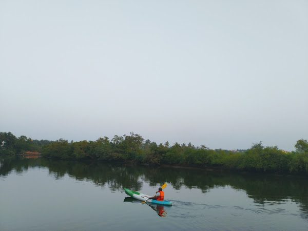 Backwater Kayaking