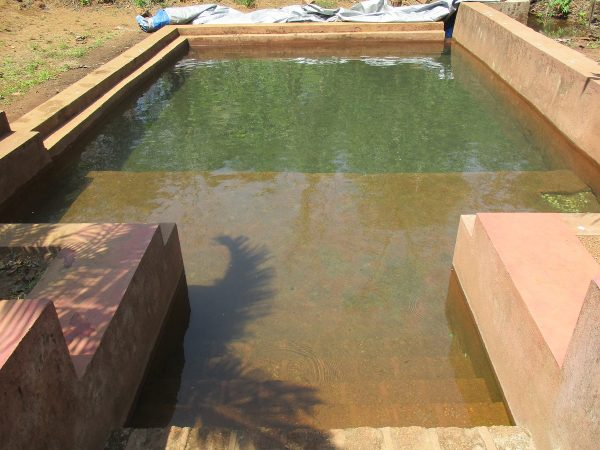 Natural Spring Pool